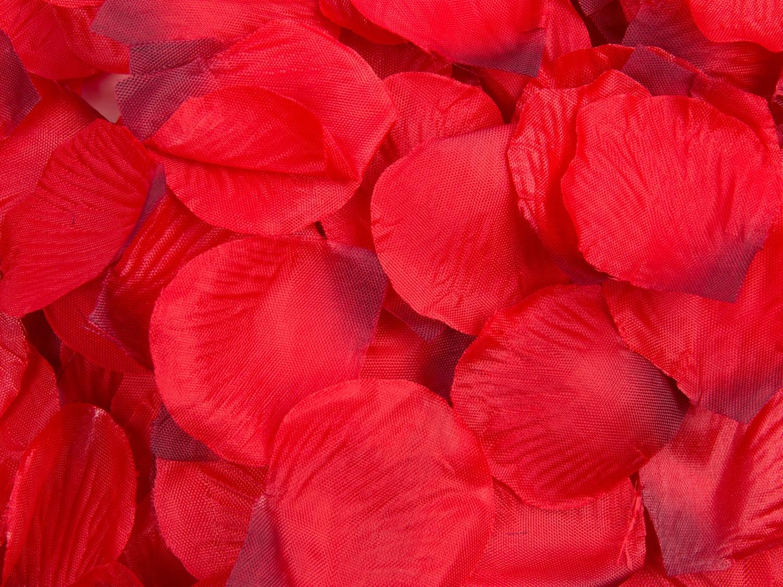 romantik med rosenblade